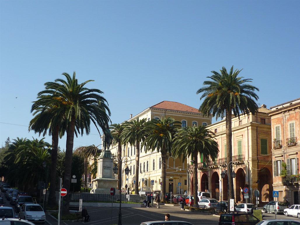 palme-in-piazza-della-liberta